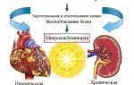 Норма микроальбумина (malb) в моче