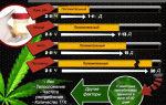 Тест на наркозависимость: марихуана, конопля, гашиш, амфетамин и др.