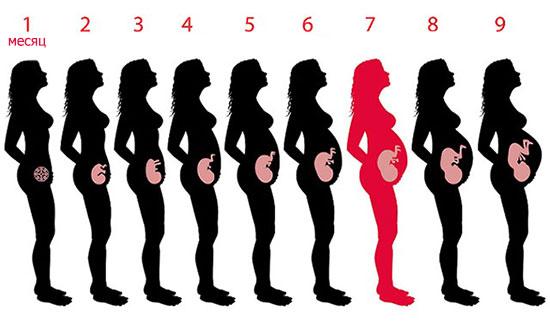 Урина беременность
