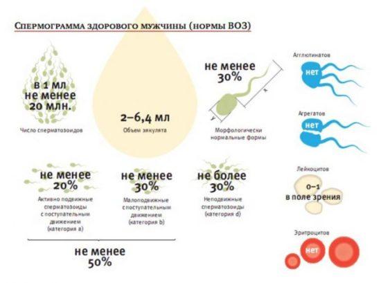 Данные по спермограмме